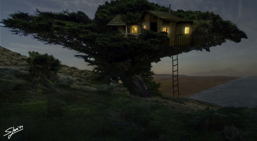 A home in the trees